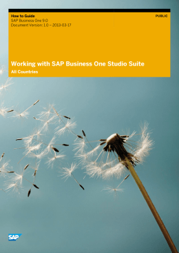 Working with SAP Business One Studio Suite - Mepa