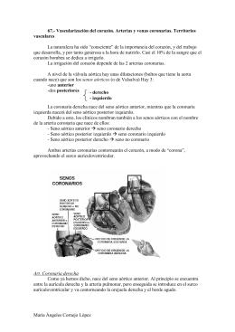 Vascularización del corazón. Arterias y venas coronarias. Territorios