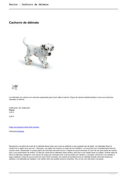 Perros : Cachorro de dálmata