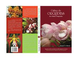 PDF Preview - Orquídeas Tropicales