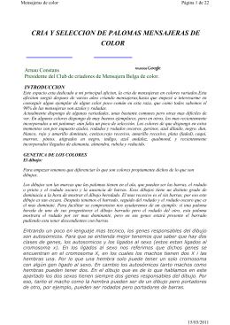CRIA Y SELECCION DE PALOMAS MENSAJERAS DE COLOR