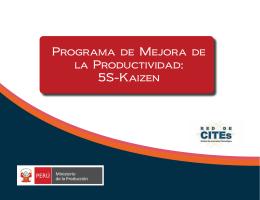 Programa de Mejora de la Productividad: 5S