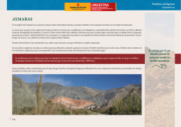 Aymaras - Artículo - PDF
