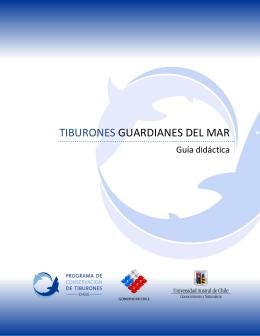 TIBURONES GUARDIANES DEL MAR - Programa de Conservación
