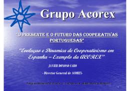 Grupo Acorex