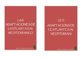 Descarregar PDF - Jardí Botànic de la Universitat de València