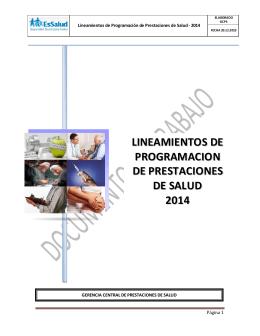 Lineamientos de programación 2014