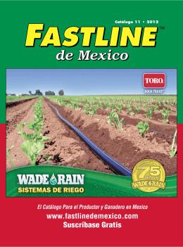 fastline de mexico