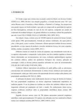 TCC ROBERTA JUNHO 2012 Texto