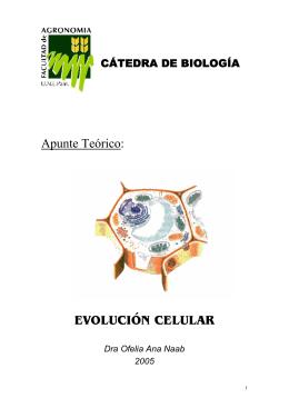 08 evol_C_eucariotica