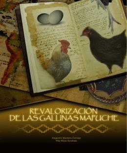 Revalorización de las Gallinas Mapuche