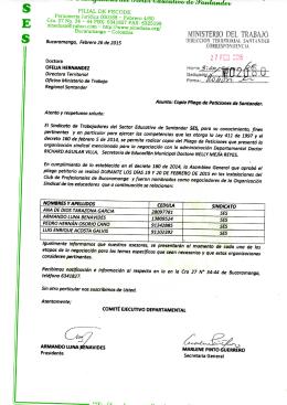 Pliego de Petición Santander