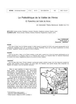 Le Paléolithique de la Vallée de l`Arros