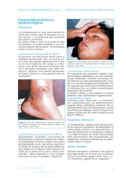 caratula graficos - Dirección General de Epidemiología