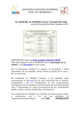 asociacion club felino colombiano. acfec. nit: 900.006.866
