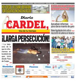 hoy desde las 9am liberaran tortuguitas en chachalacas