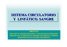 SISTEMA CIRCULATORIO Y LINFÁTICO. SANGRE SISTEMA