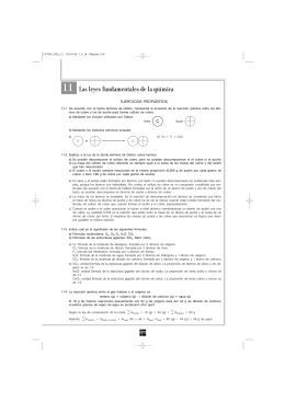 11 Las leyes fundamentales de la química