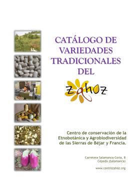 Catálogo Var. Tradicionales. 2013. Centro Zahoz
