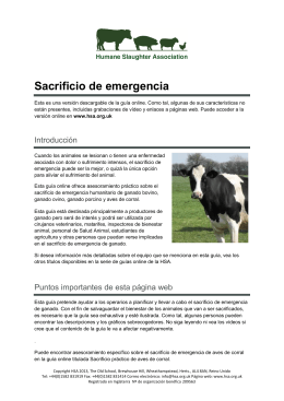 Sacrificio de emergencia - Humane Slaughter Association