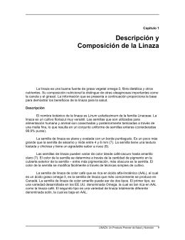 Descripción y Composición de la Linaza