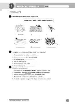 ejercicios de refuerzo de inglés