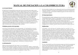 Versión para imprimir - Federación Valenciana de Colombicultura