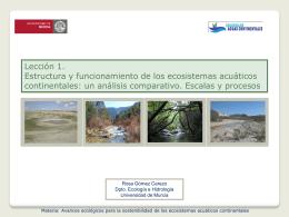 Presentación 1 - OCW - Universidad de Murcia