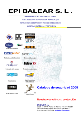 Catalogo de seguridad 2008