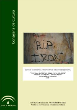 Informe final - Instituto Andaluz del Patrimonio Histórico