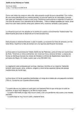 Sotillo de las Palomas en Toledo