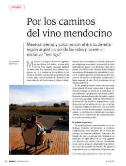 Por los caminos del vino mendocino