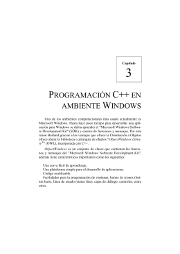 PROGRAMACIÓN C++ EN AMBIENTE WINDOWS
