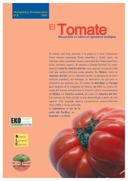 Tomate - ENEEK