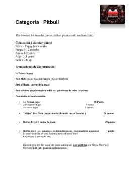 Categoría Pitbull