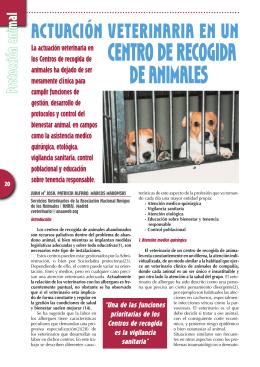 Actuación veterinaria en un centro de acogida de animales