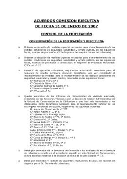 acuerdos comision ejecutiva de fecha 31 de enero de 2007