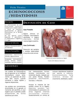 ECHINOCOCCOSIS /HIDATIDOSIS