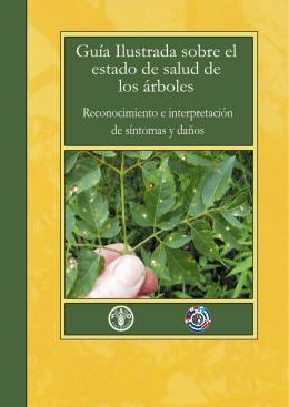 Guía ilustrada sobre el estado de salud de los árboles