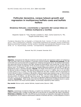 Follicular dynamics, corpus luteum growth and regression in
