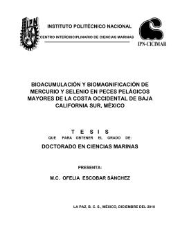 BIOACUMULACIÓN Y BIOMAGNIFICACIÓN DE MERCURIO Y