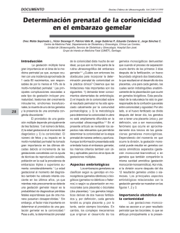 Determinación prenatal de la corionicidad en el embarazo gemelar