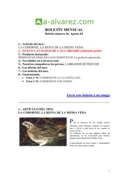 BOLETÍN MENSUAL - Armería Álvarez