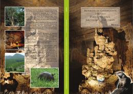 Programa de Conservación y Manejo Parque Nacional Grutas