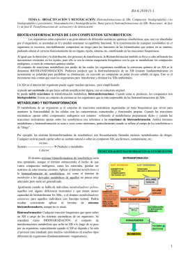 2010/11-1 1 biotransformaciones de los compuestos xenobioticos
