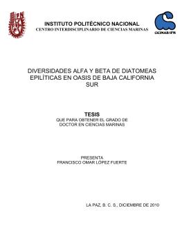 diversidades alfa y beta de diatomeas epilíticas en oasis
