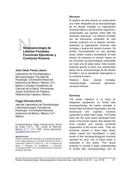 Neuropsicología de Lóbulos Frontales, Funciones Ejecutivas y