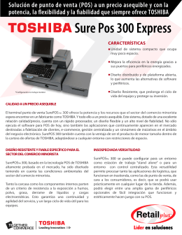 Sure Pos 300 Express