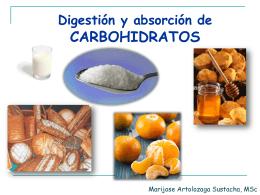 CLASE Digestión y absorción de Carbohidratos