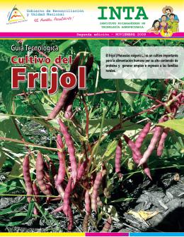 Cultivo del - Instituto Nicaragüense de Tecnología Agropecuaria
